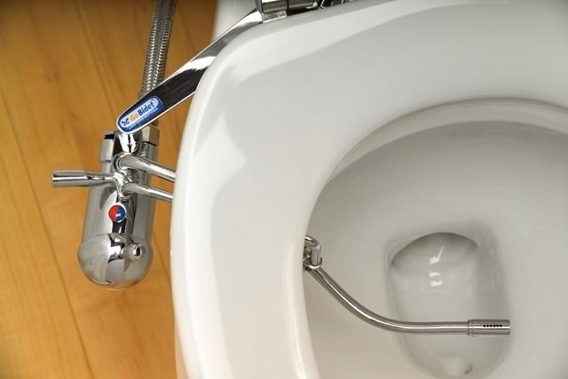 مزیت ها و معایب بیده توالت فرنگی